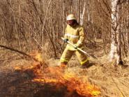 В Архангельской области действует особый противопожарный режим