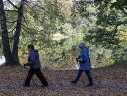 Пенсионерам-северянам планируют компенсировать проезд к месту отдыха