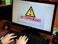 В Архангельской области сотрудники полиции раскрыли серию мошенничеств