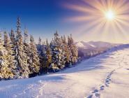 Завершившаяся календарная зима в России вошла в число самых теплых