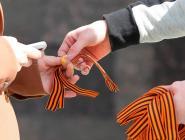 В Архангельской области раздадут более 50 тысяч георгиевских ленточек