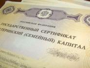 В Архангельской области выдано 69 тысяч сертификатов