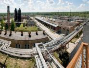 Директор Котласского химического завода награждена знаком «За заслуги перед Архангельской областью»