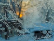 В Архангельскую область приходят морозы