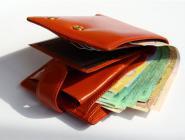 Россияне будут объясняться таможне происхождение своих денег в кошельке
