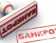 Всё больше граждан России могут объявлять себя банкротами