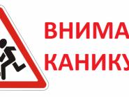 В Архангельской области пройдет мероприятие «Внимание – дети!»