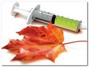 В Архангельской области началась прививочная кампания против гриппа