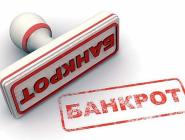 Около восьми миллионов россиян могут стать банкротами