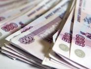 Более 10 миллионов рублей выделено на единовременную выплату для проезда в роддома