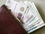 Опрос: россиян больше всего беспокоят низкие зарплаты и проблемы экономики