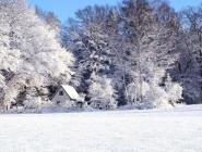 Наступающая зима может стать самой суровой за 100 лет