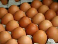 Розничная цена на мясо кур в Поморье снизилась на семь процентов