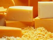 Российские производители молока поддерживают идею запретить «сыроподобные продукты»