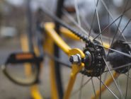 Жительница Коряжмы ищет велосипед