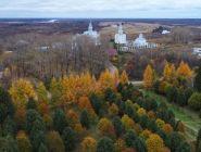 «Илим» взял под контроль состояние памятника природы в Коряжме