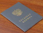 Работающие россияне должны будут выбрать тип трудовой книжки