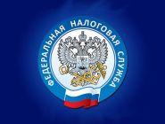 В России стартовала декларационная кампания 2021 года