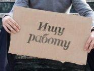 Положение на регистрируемом рынке труда Архангельской области в январе - феврале 2020 года