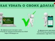 Судебные приставы проводят информационную акцию «Узнай о своих долгах»