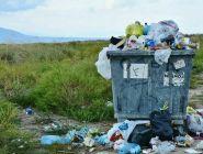 За выброс мусора из машины предложили конфисковывать транспортное средство