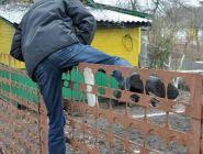 Коряжемца подозревают в 6 хищениях с дач