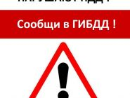 «Нарушают ПДД - сообщи в ГИБДД!»