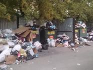 Глав регионов призвали заняться мусорной проблемой в