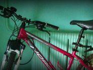 Украденные велосипеды вернули владелице