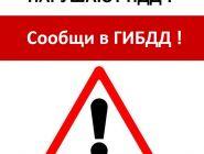 Информационно-пропагандистская кампания «Нарушают ПДД - сообщи в ГИБДД!»