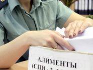 Долги россиян по алиментам достигли исторического максимума