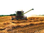 Архангельские депутаты предложили безвозмездно предоставлять землю сельхозпроизводителям